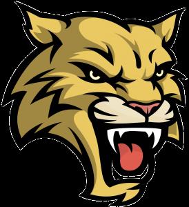 Saluda Wildcat Logo